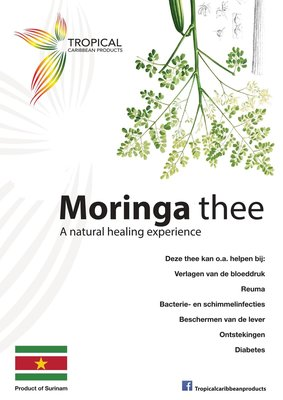 Tropical Carribean Products Moringa poeder 20g