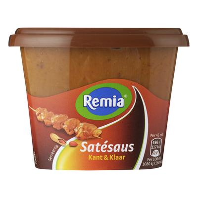 Remia Satésaus kant-en-klaar 265ml *THT mei 2019*