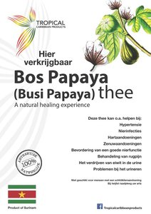 Tropical Carribean Products Biologische bos papaya thee 25g